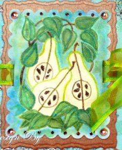 D2193 Pears A