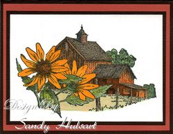 IO-sunflower-barn Sandy Hulsart