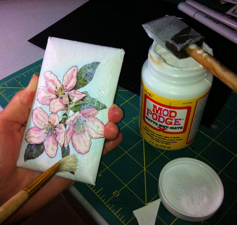 RabApple Blossom3