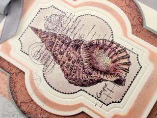 Io dk shell j gropp 3