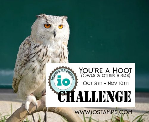 Hoot Challenge